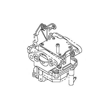 Mercury F20 Fourstroke Carburator
