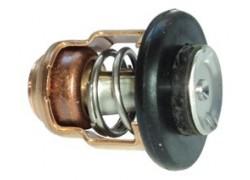 Thermostaat voor Yamaha buitenboordmotor